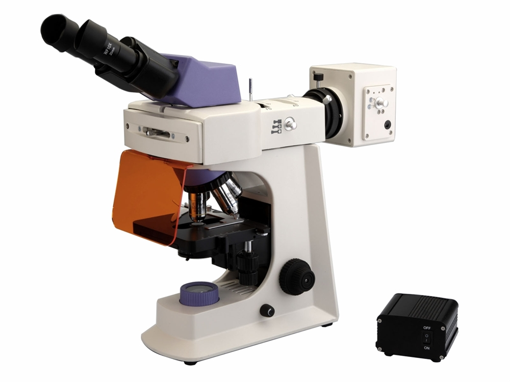 BS-2036F - LED Fluorescent Biological Microscope